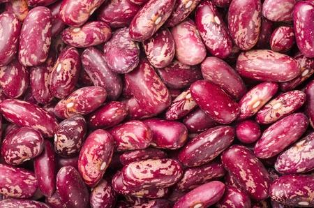 legumbres secas: Secas de ri��n manchadas frijol rojo