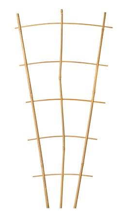 trellis: Bamboo trellis plant support isolated on white