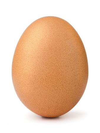 gallina con huevos: Solo huevo marr�n pollo aislado en blanco