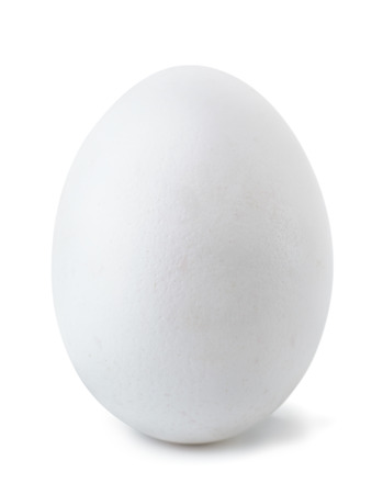 White egg isolated on white