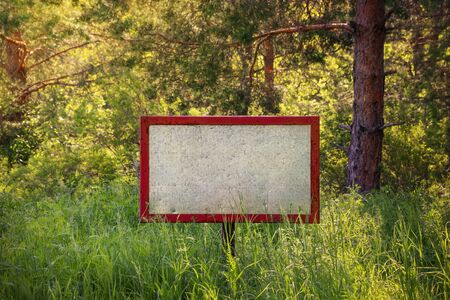 Old blank signboard in the woods photo