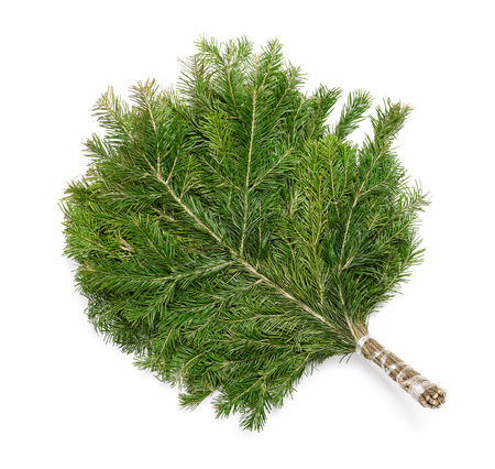 juniper tree: Juniper sauna broom isolated on white