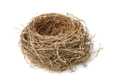 nido de pajaros: Nido vacío de aves aisladas en blanco Foto de archivo