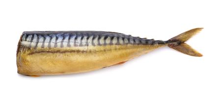 smoked: Smoked mackerel  without head isolated on white Stock Photo