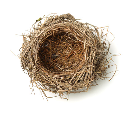 Vue de dessus vide nid d'oiseau isolé sur blanc Banque d'images - 51270207