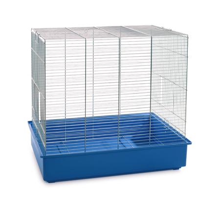 gabbia per animali vuota isolata su bianco