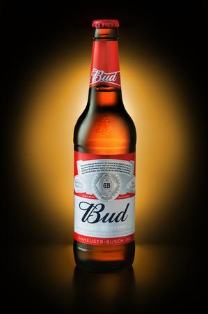 SAMARA - NOVEMBER 24, 2016: Product shot of Budweiser beer bottle on dark background