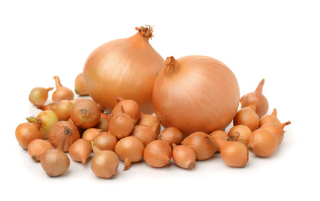 Onion sets isolated on white