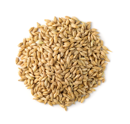 Top view of barley grains isolated on white