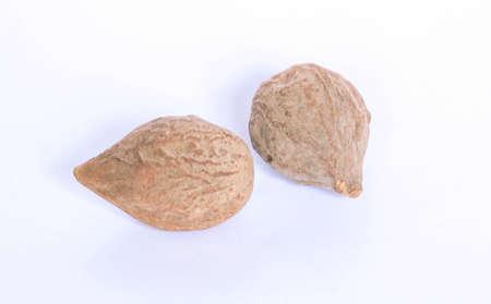 laxative: Terminalia bellirica dry fruit Stock Photo