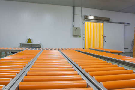 food industry: Conveyor belts in food industry