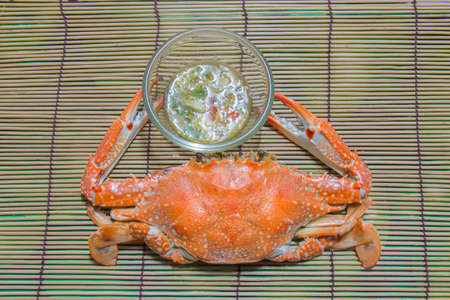 dungeness: Cooked whole dungeness crab with natural marks on the shell