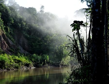 페루 아마존에있는 탐보 파타 강 일출