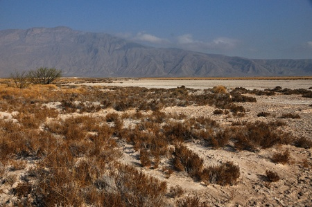The Chihuahuan Desert landscape in Coahuila, MX