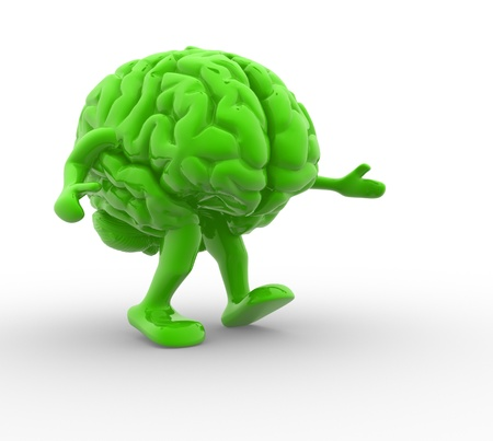 cerebellum: Brain  This is a 3d render illustration Stock Photo