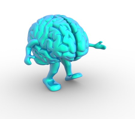 physiology: Brain  This is a 3d render illustration Stock Photo