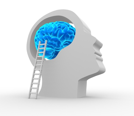 Human head with brain and ladder. 3d render illustration  illustration