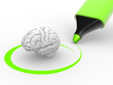 cerebral cortex:  3d a brain  and a green marker. 3d render  Stock Photo