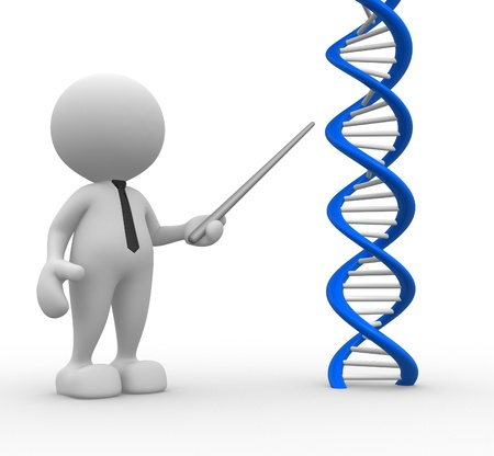 genetically: 3d people - man, person pointing a DNA