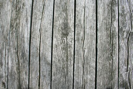 holz: Background of old, gray wood