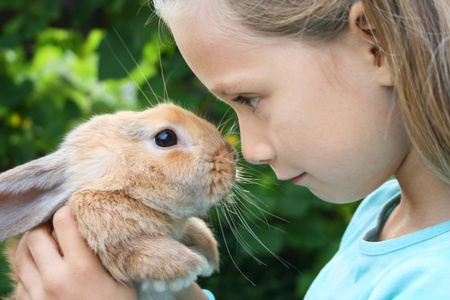 Young girl with long, fair hair with a rabbit 写真素材