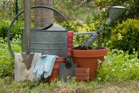 Gardentools and flowerpots in a garden photo
