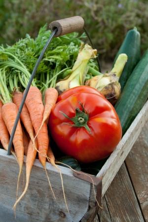 wooden basket with vegetables