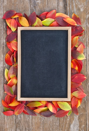 blackboard with frame of colorful leaves on a wooden background photo