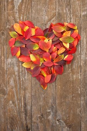 hart van kleurrijke bladeren op een houten achtergrond