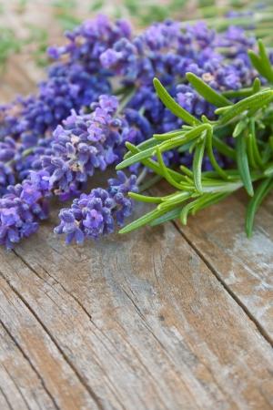 Lavendel, Rosmarin und Thymian