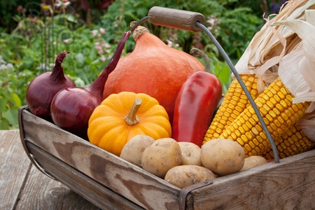 basket with vegetables 写真素材