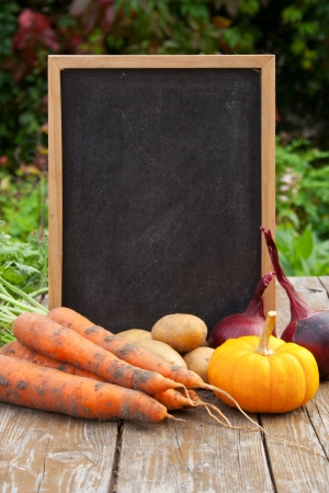 blackboard with vegetables Stock Photo - 16623584