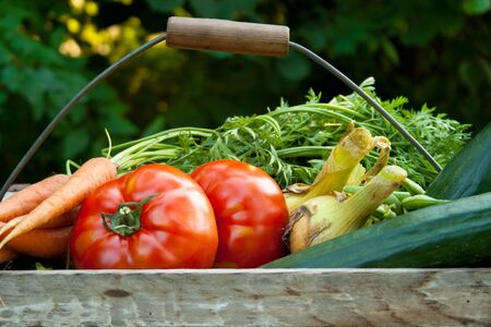 basket with vegetables Stock Photo - 16623836
