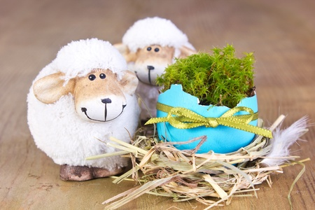 two sheep with easter egg on wooden ground photo