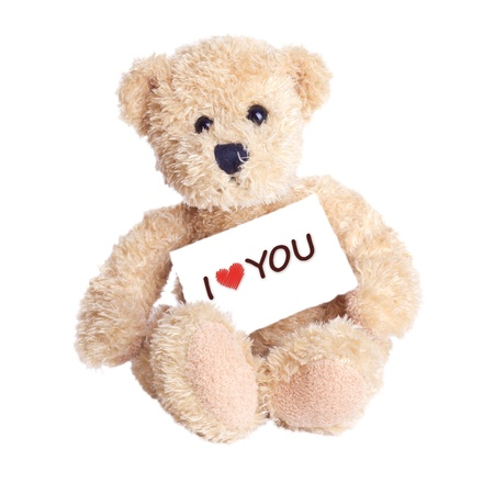 valentine s day teddy bear: teddy bear with lettering i love you
