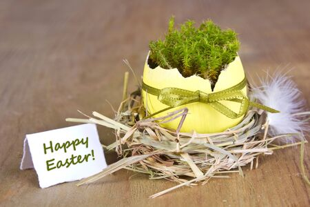 Easter card with easter egg, moss and feather photo