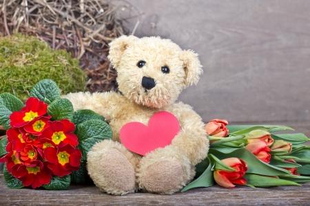 valentine s day teddy bear: teddy  bear with flowers and heart Stock Photo