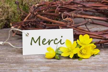 yellow blossoms and white card  with lettering thanks photo