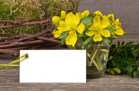 twigs: yellow flowers, twigs and white card