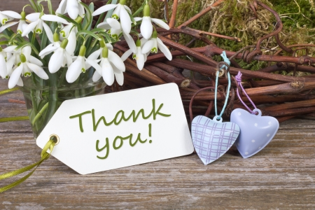 snowdrops, twigs, hearts and  card with lettering thanks photo
