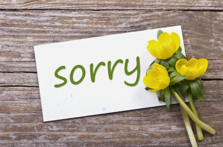 yellow flowers and card with lettering sorry Stock Photo - 18498075