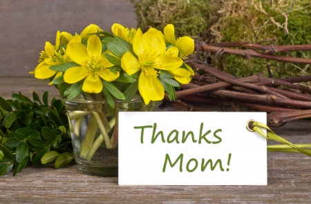 yellow flowers, twigs, hearts and Mother s day card photo
