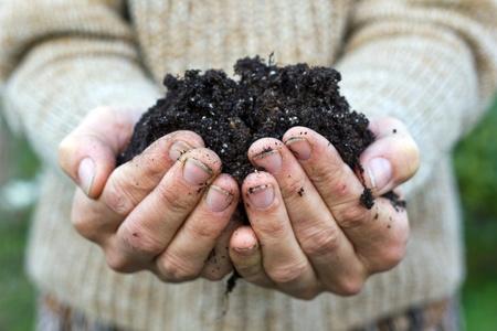 humus soil: hands with garden soil Stock Photo