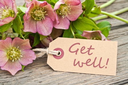 pink flowers and label with lettering get well photo