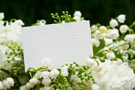 muguet: muguet, snowball and card Stock Photo