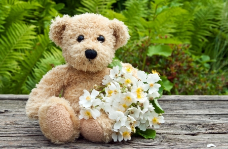 teddy bear with white roses Stock Photo