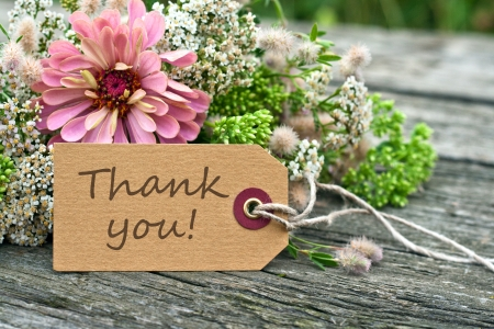 thanks: thank you, thanks, mothers day, green, flower, smell, scented,  Beauty, gift, present, bouquet, summer,  card, paper,   pink,  green, leaf,   lambsquarter,  chenopodium album, sedum, yarrow, achillea millefolium, zinnia, writing, text, writing, lettering, Stock Photo