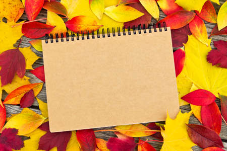 note book: colored leaves and note book