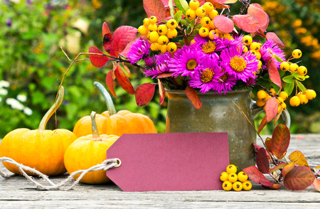 flowers, pumpkin and label photo