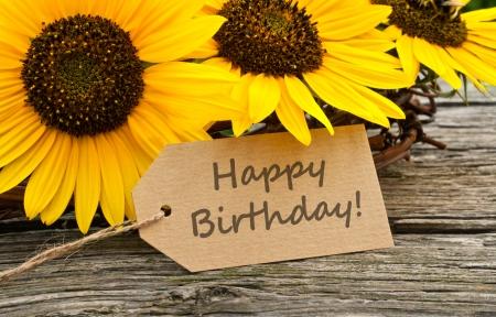 Girasoles y tarjeta de cumpleaños Foto de archivo - 23460853